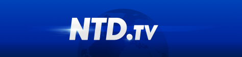 NTD Television Korea's website
