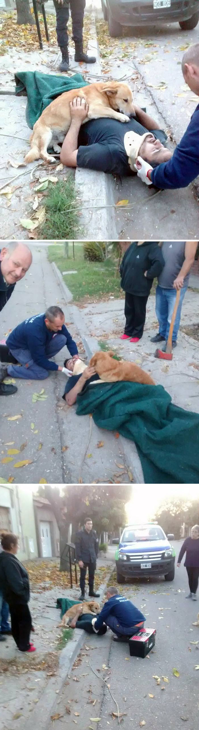 Concerned Dog Refuses To Stop Hugging His Owner Who Was Injured In A Fall
