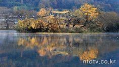 [포토에세이] 위량지의 가을