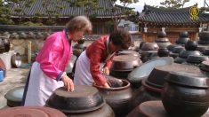 [헬코가 만난 사람들] 261회 한국의 맛을 찾아 떠나는 여행 '순창'