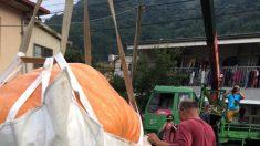 3000명이 먹을 수 있는 초대형 호박(영상)