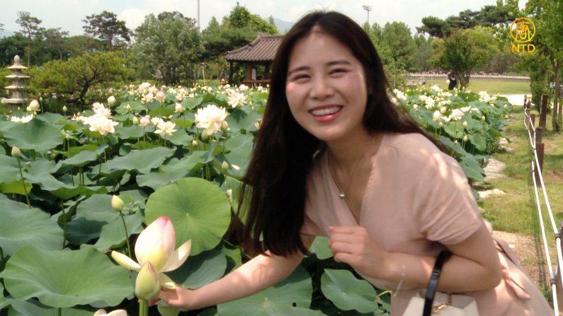 [헬로우 코리아] 266회-2 물과 꽃의 정원 '세미원', 연꽃 축제 현장을 가다