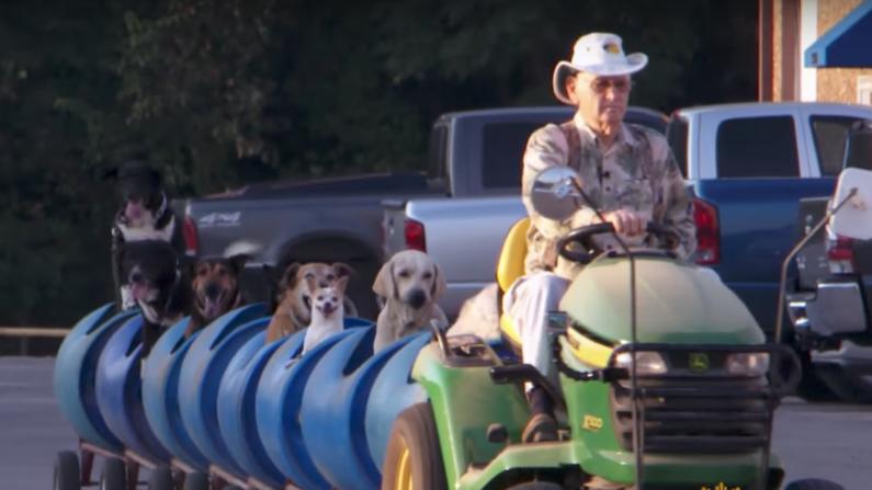 80살 노인이  유기견들이 여행하기 위해 탈 '개 기차'를 만들다!