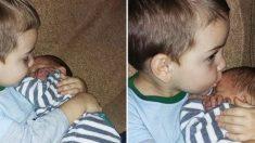남동생을 너무 사랑하는 3살 형