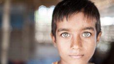 미얀마 군대 로힝야에 고의 방화, 인종 청소 중