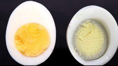 "GMO 계란의 위험성..알고보니 ""원래 계란은 다 그래"""