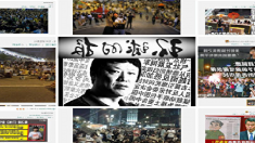 """환구시보 """"한국은 김치먹고 멍청해졌다"""", 주중대사관 항의"""