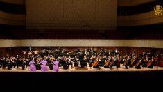[영상] 션윈오케스트라는 마음의 기를 느낄 수 있는 공연