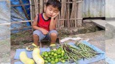채소 행상을 하며 졸고 있는 필리핀 아이