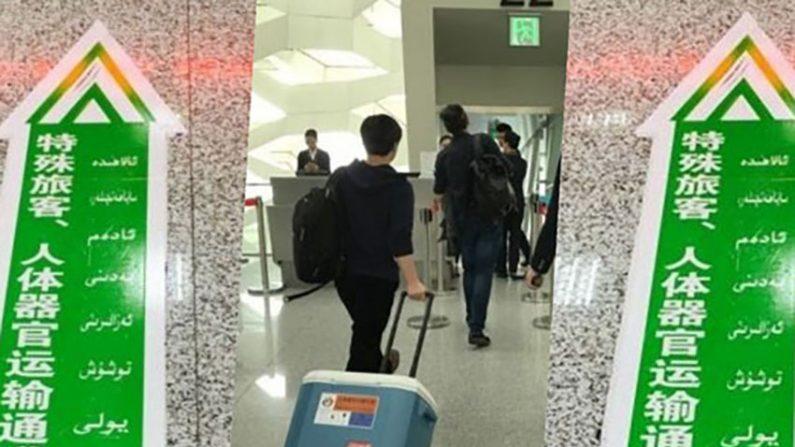 중국 남방항공 인체 장기 수송 시인