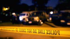 두 아들 오븐에 넣어 살해한 美 여성 체포.. 남편이 신고