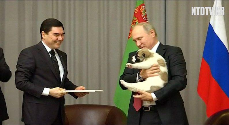 [영상] 스트롱맨 푸틴을 녹인 강아지 선물