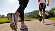 걷기 다이어트 확실한 방법? 최적의 속도, 시간대 따로 있어