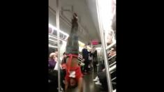 흥겹거나 소란스럽거나… 지하철에서 만난 뜻밖에 봉춤 달인(영상)