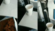 """""""비행기에서 과자를 먹다가 앞쪽을 보고 깜짝 놀랐다""""(영상)"""