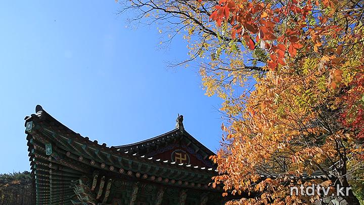 불모산(佛母山) 장유사(長遊寺)