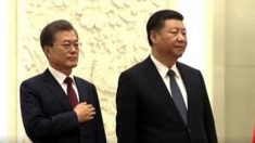 미국 언론 : 시진핑의 노력과는 거꾸로 '미꾸라지가 기자 구타'