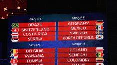 월드컵 신태용호 초반부터 험난 예고.. 16강 진출 확률 18.3%