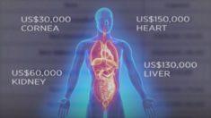 누군가를 죽여야 내가 산다면? 중국 원정 장기이식 법으로 금지해야(영상)