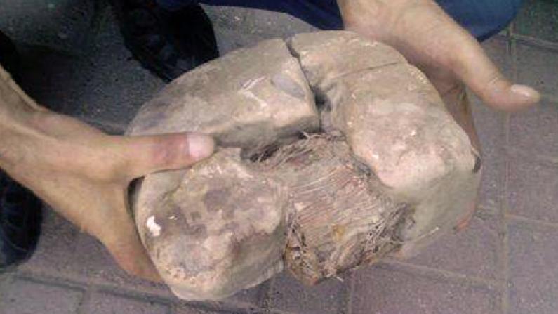 발칸반도에서 발견된 2만년 전 물체, 예상 밖 구조에 추측 분분