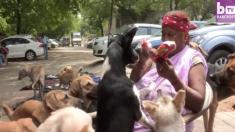 떠돌이 개 '400마리'를 먹여 살리는 인도 여인