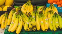 바나나가 몸에 좋은 이유 13가지