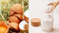 수십 가지 질병을 개선하는 '달걀껍질' 효능