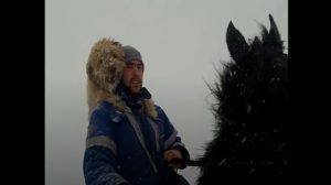 (영상) 말 등에 태우자 찬 공기 음미하는 개, 순백의 황홀한 동행