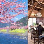 일본에서 가장 '달달한' 노부부의 결혼생활 비결