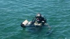 손님 결혼반지 찾기 위해 바닷속까지 뒤진 남성의 끝없는 선행 (영상)