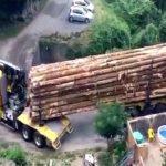 세상에서 제일 운전 잘하는 운전수, 트럭이 끊어져도 꿋꿋이 운전 (영상)