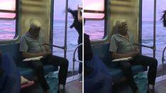 (영상) 여행감성 자극하는 스리랑카 해변 기차