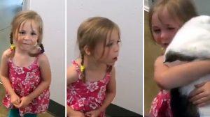 (영상) 소녀의 가슴 설렌 기다림..3년 만에 다시 만난 고양이