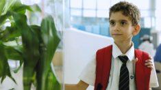 이케아가 준비한 실험의 놀라운 결과 '식물도 느낀다'(영상)