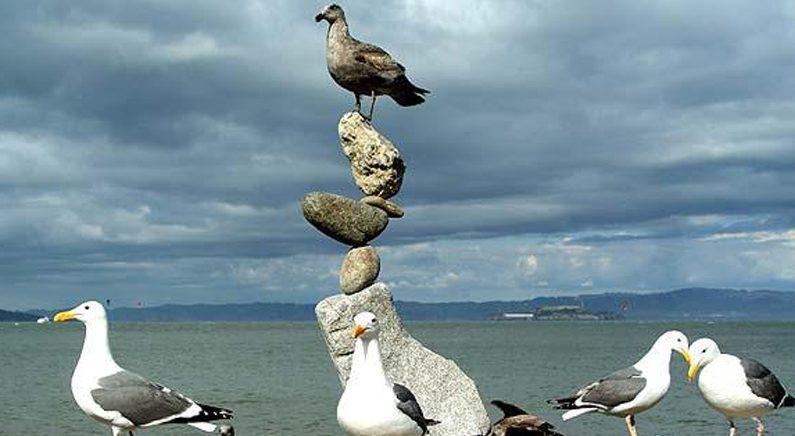 '보고도 믿을 수 없는 돌탑'