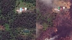 하와이 킬라우에아 화산 주변 1년 전과 현재 비교