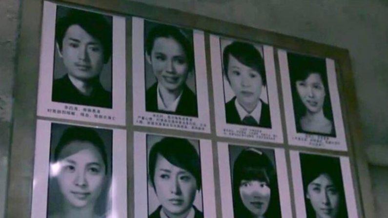 영정사진에 서현·손예진 사진 사용한 中예능 비난 받아