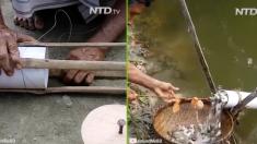 (영상) 전통적인 덫 만들기, 물고기는 필요한 만큼만