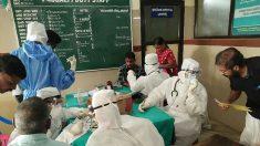인도서 치사율 70% '니파 바이러스' 공포 확산..이미 10명 사망