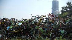 중국 공유 자전거의 비극..곳곳에 생겨난 '자전거 무덤'