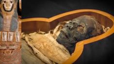 (영상) 심약자 주의.. 고대 이집트인들은 미라를 어떤 절차로 만들었을까