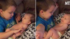 (영상) 못견디게 사랑스러운 동생을 다리에 올려 놓고 눈을 맞추며 챙겨주는 자상한 오빠