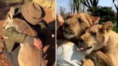 (영상) '말 대신 체온으로' 동물들이 인간에게 감사를 표시하는 따스한 방법
