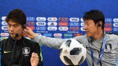BBC가 예측한 한국 vs 스웨덴 전 결과