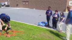 (영상) 마트 통유리에 부딪혀 죽은 새에게 직원들이 치러준 장례식