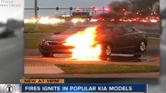 현대·기아차 화재 심각, 불 타는 영상 속속 제보