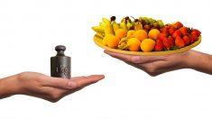 과일을 무작정 먹으면 안 되는 이유 3가지