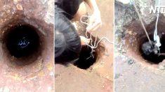 (영상) 손이 닿지 않는 깊은 구덩이에 빠진 강아지.. 노끈으로 구출 도전