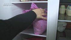 """""""음식물 쓰레기, 냉장고에 보관하면 위험하다"""""""