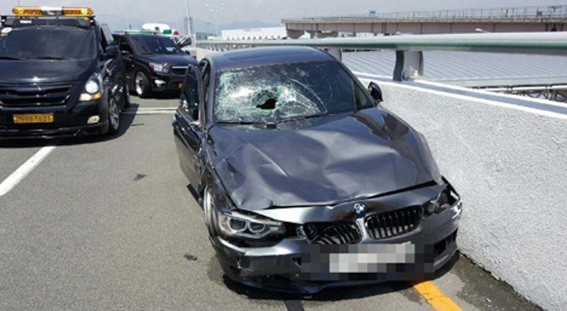김해공항 BMW 질주사고 영상에 '부글'…피해자 이틀째 의식없어